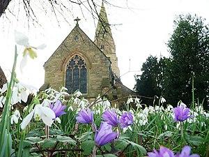 English: Lullington Church with spring flowers...