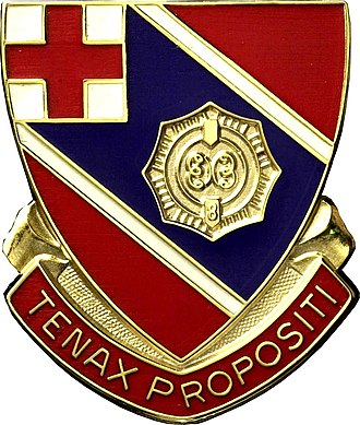 Army National Guard and Active Regular Army Units with Colonial Roots - Distinctive Unit Insignia: 101st Eng Bn