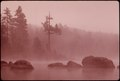 MISTY MORNING ON TWITCHELL LAKE SHOWS VIRGIN WHITE PINES AND PARTIALLY SUBMERGED BOULDERS IN THE ADIRONDACK FOREST... - NARA - 554755.tif
