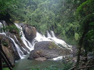 Tham Pla–Namtok Pha Suea National Park
