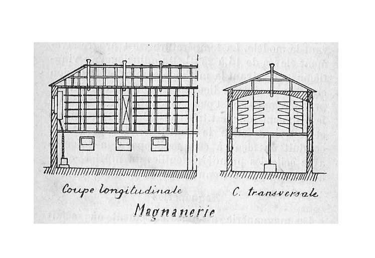 Magnanerie - coupe schématique