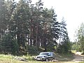 Maksatikhinsky District, Tver Oblast, Russia - panoramio (7).jpg