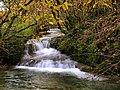 Malans, cascade du moulin Barberot sur le ruisseau de Malans.jpg