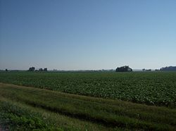 Farm fields in Marion Township