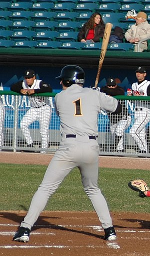 Mark Reynolds (baseball) - Reynolds batting for the South Bend Silver Hawks, Single-A affiliates of Arizona Diamondbacks, in 2005