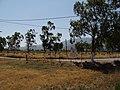 Marmari - panoramio (5).jpg