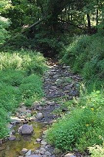 Martin Creek (Susquehanna River) river in United States of America