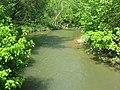 Massie's Creek in the Indian Mound Reserve.jpg