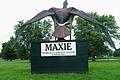 Maxie the goose 1.jpg