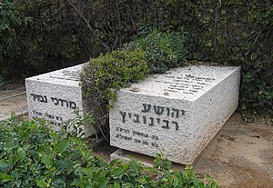 Mordechai Namir - Tomb of Namir and fellow mayor of Tel Aviv Yehoshua Rabinovitz in the Trumpeldor cemetery.