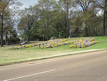 Memphis M East Parkway Memphis TN 2013-04-08 011.jpg