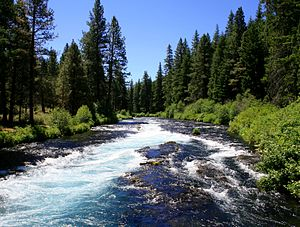 English: The Metolius River near Wizard Falls ...