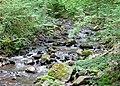 Mettlach (Duitsland) - panoramio (15).jpg