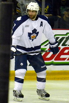 Mike Zigomanis Marlies.jpg