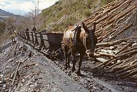 Mine charbon Palacios del Sil avril 1984.jpg
