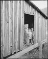 Miner's children stand in doorway of the Monroe Jones' house. Notice that this doorway has no door, a quilt is spread... - NARA - 541191.tif