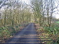 Minor road through Ratby Burroughs - geograph.org.uk - 318188.jpg