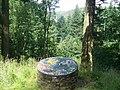 Mosaic in Cwm-y-Rhaiadr Forest - geograph.org.uk - 1421209.jpg