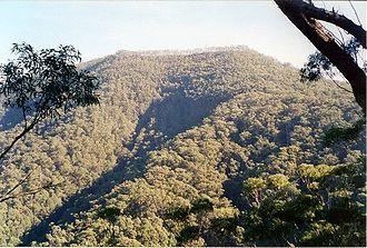Mount Imlay National Park - Mount Imlay, 886 metres above sea level