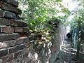 Muur van kasteel Borgwal.jpg