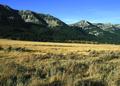 NRCSMT01033 - Montana (4915)(NRCS Photo Gallery).tif
