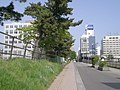 Nakakoji at Nakadori 1 area, 20080506-1.jpg