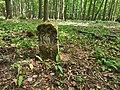 Nationalpark Hainich craulaer Kreuz 2020-06-03 16.jpg