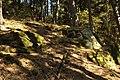 Natural monument Zabrdská skala in 2011 (7).JPG