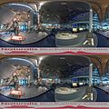 Naturalis Biodiversity Center - Museum - Exhibition Primeval parade 33 - Overview room with skeletons - Panorama 360 3D.jpg