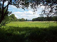Naturschutzgebiet Affelderchen und Rettichbruch von Klein Welzheim.JPG