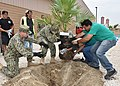 Navy officers plant a tree in observation of Earth Day. (26533693046).jpg