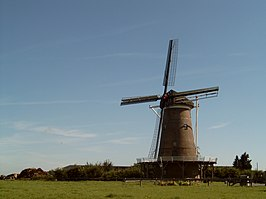 De Hollandsche Molen op de Needse Berg