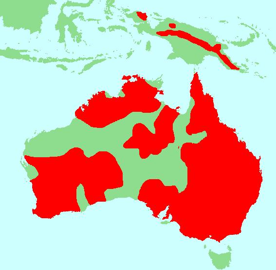 Neosittidae distribution