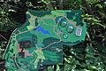 Neuer Botanischer Garten - 2014-09-27 - Bild 1.JPG