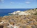 Nordküste, Ikaria.jpg