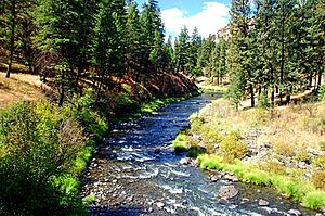 North Fork John Day River - The river flowing beside Highway 395 in Umatilla County