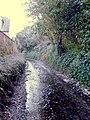 Nurton Brook View - geograph.org.uk - 1245729.jpg