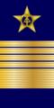 OF-10 Flottenadmiral VM.png