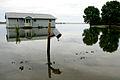 Oakville flooding.jpg