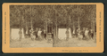 Our camp in Yosemite Valley, U.S.A, from Robert N. Dennis collection of stereoscopic views.png
