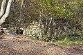 Pļavas dzirnavas - panoramio.jpg