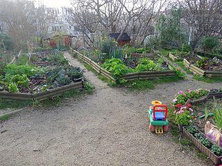 Butte bergeyre wikip dia for Jardin de la villa paris
