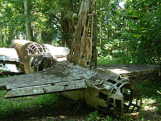 Nakajima Ki-49 - Wrecked Ki-49 on Papua New Guinea