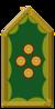 Генерал полиции