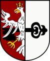 Coat of arms of Gmina Budzyń