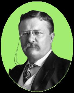1912 Progressive National Convention