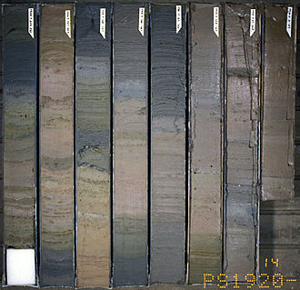 Marine isotope stage - Sections of sedimentary cores from off Greenland