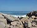 Pacific Grove P4080330.jpg