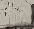 Painters on the Brooklyn Bridge Suspender Cables-October 7, 1914 - Flickr - Museum of Photographic Arts Collections.jpg