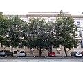 Palackého 3, Brno (2).JPG